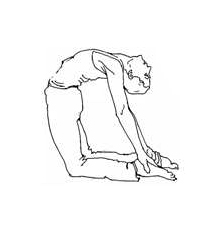 asana les postures  véronique cancel yoga
