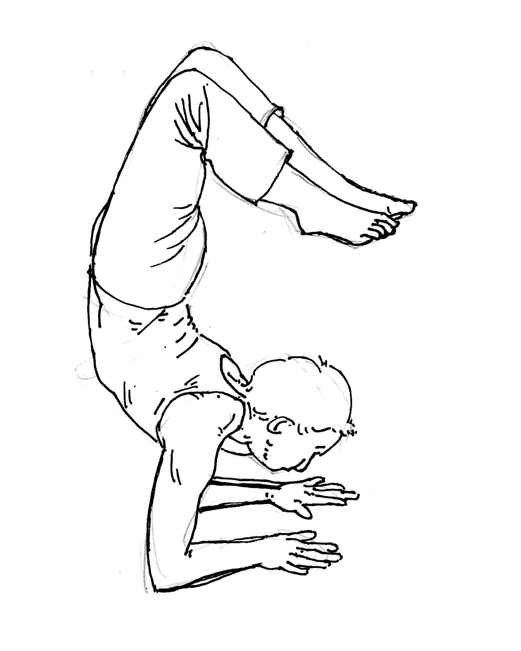 Asana, les postures - Véronique Cancel Yoga